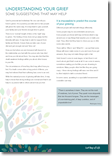 Understanding grief and some suggestions that may help - Information for Families and Carers