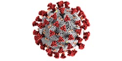 Coronavirus illustration created at the Centers for Disease Control and Prevention (CDC)